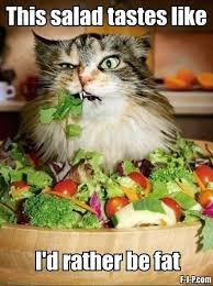 Eating Healthy Meme - the 20 funniest diet memes plus cats man v fat