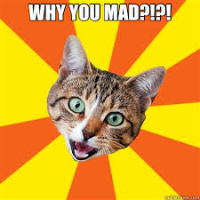 Mad Cat Memes - why you mad cat meme cat planet cat planet