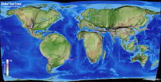 global tree cover views of the world