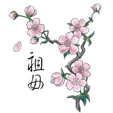 japanese cherry blossom meaning search ideas