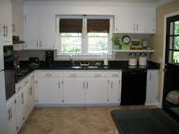 Eco Kitchen Design by Antique White Kitchen Cabinets With Black Granite Countertops Eco