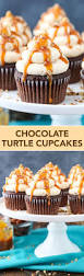 top 25 best mini cupcakes ideas on pinterest candy filled cake
