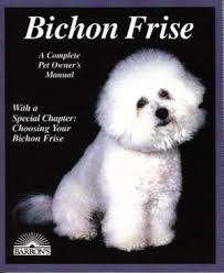 cost of a bichon frise bichon frise recommended reading