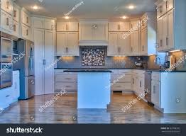 gray kitchen cabinets with black stainless steel appliances modern kitchen stainless steel appliances black stock photo