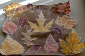 fall leaves placemats for thanksgiving