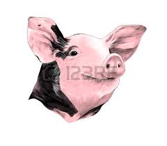 painted pig stock photos u0026 pictures royalty free painted pig