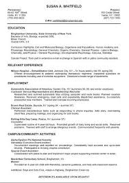 Professional Resume Format Examples by 36 Best Simple Resume Template Images On Pinterest Simple Resume