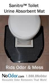 Best Odor Eliminator For Bathroom 20 Best Bathroom Odor Solutions Images On Pinterest Bathroom