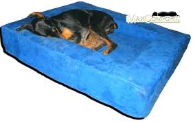 pillow top dog bed serta pillow top dog beds full image for orthopedic heated dog bed