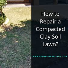 Backyard Soil How To Repair A Compacted Clay Soil Lawn Renovate Australia