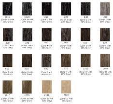 color shades of grey gray hair color shades color chart of gray shades hair and nails