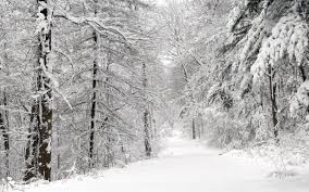 Wallpaper For House by Snow House Wallpaper Winter Nature Wallpapers For Free Download