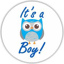 108 it u0027s a boy owl stickers labels baby shower party favors kisses