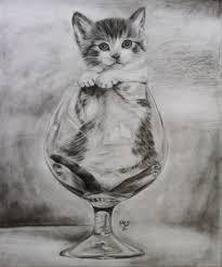 19 cat drawings art ideas sketches design trends premium