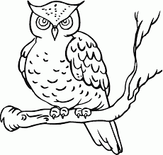 coloring pages of owl babies coloring home