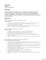 resume summary statements about experiences accountant resume summary accounting manager financial analyst tax