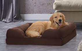 10 Best Sofa Beds 10 Best Dog Sofas And Chairs In 2017