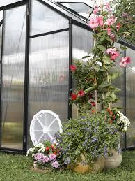 8 X 12 Greenhouse Kits Stc Greenhouses Greenhouse 8x12 In Black Eg45812v On Sale