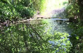 chambre d agriculture yonne inra cultiver de l eau propre