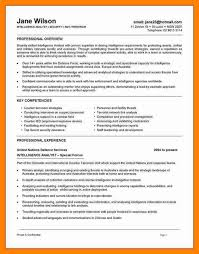 information security resume sample example it security
