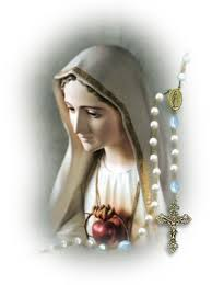 chaplet of the holy a year of prayer 365 rosaries our of the most holy rosary