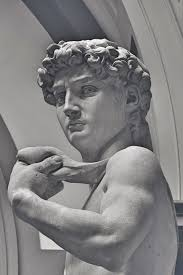inspiration michelangelo u0027s david u2014 torchona
