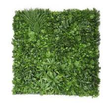 greenery imports australia u0027s largest importer of artificial plants
