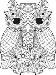 hidden owl tree johanna basford secret garden coloring book