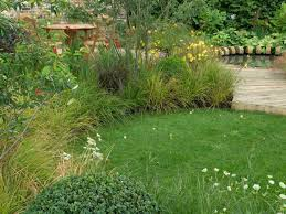 how to sow grass seed how tos diy