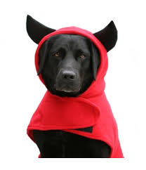 Extra Large Dog Halloween Costumes Dog Devil Costume Dog Halloween Costumes Canine U0026