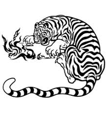 tiger with black white royalty free vector image