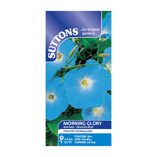 suttons morning glory seeds ipomoea heavenly blue departments