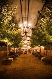 String Lights Outdoor Wedding by 36 Best Outdoor Weddings Images On Pinterest Outdoor Weddings