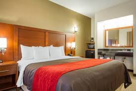Comfort Inn Sfo Comfort Inn U0026 Suites San Francisco Airport West San Bruno Ca