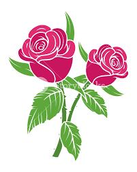 valentine roses royalty free stock image storyblocks