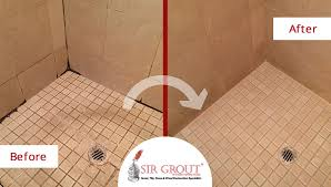 Grout Cleaning Service Two Birds One Stone See How We Restored Both These Foyer And