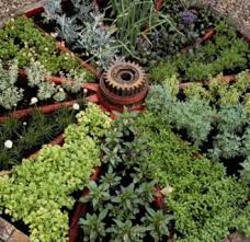 Potted Herb Garden Ideas Herb Container Garden Ideas 19 Astonishing Herb Garden Ideas