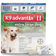 picking a flea u0026 tick medication for your pet dr justine lee