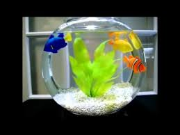 aquarium décor small aquarium for your home