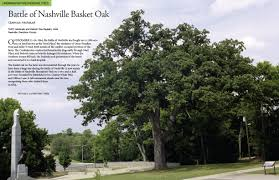 news and information from trees nashville