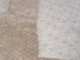 Area Rug Cleaning Equipment Carpet Cleaning Chemicals Supplies Products