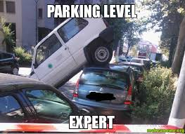Level Meme - parking level expert make a meme