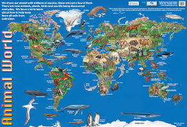 World Map Posters by Animal World Poster By Chart Media Chart Media