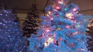 christmas trees in tacoma g u0026l bark supply