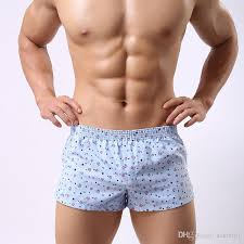 brand boxer high quality underpants cotton