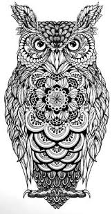 100 free coloring pages for adults and children owl 100 free