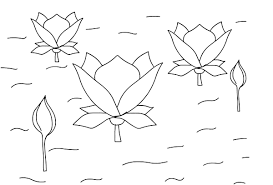 lotus flower coloring pages eson me