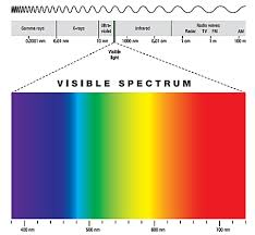 Can Color Blindness Be Prevented Blue Light And Your Eyes Prevent Blindness