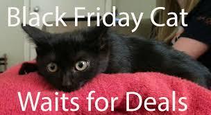 best deals hunting black friday best cyber monday 2013 video game deals gamespot