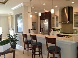 Kitchen Remodel Design Ideas Plain Modern Kitchen Remodel Remodels Design Ideas Y On Decorating